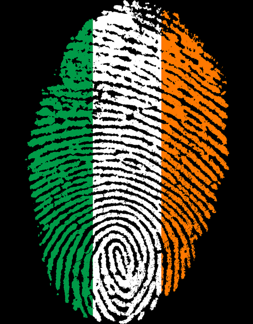 Application for Irish Citizenship